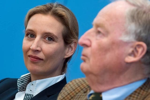 AfD: Gauland kommt mit Alice Weidel nach Rheinfelden