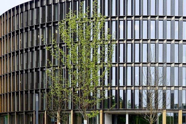 Rathaus im Stühlinger: Neue Regeln fürs Parken