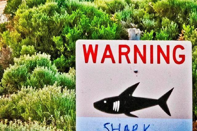 Australischem Fischer springt 3-Meter-Hai ins Boot
