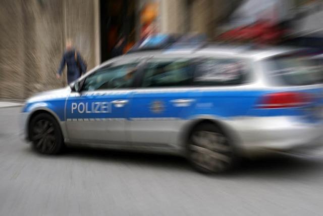 Schopfheim: Unbekannte stehlen Autokennzeichen