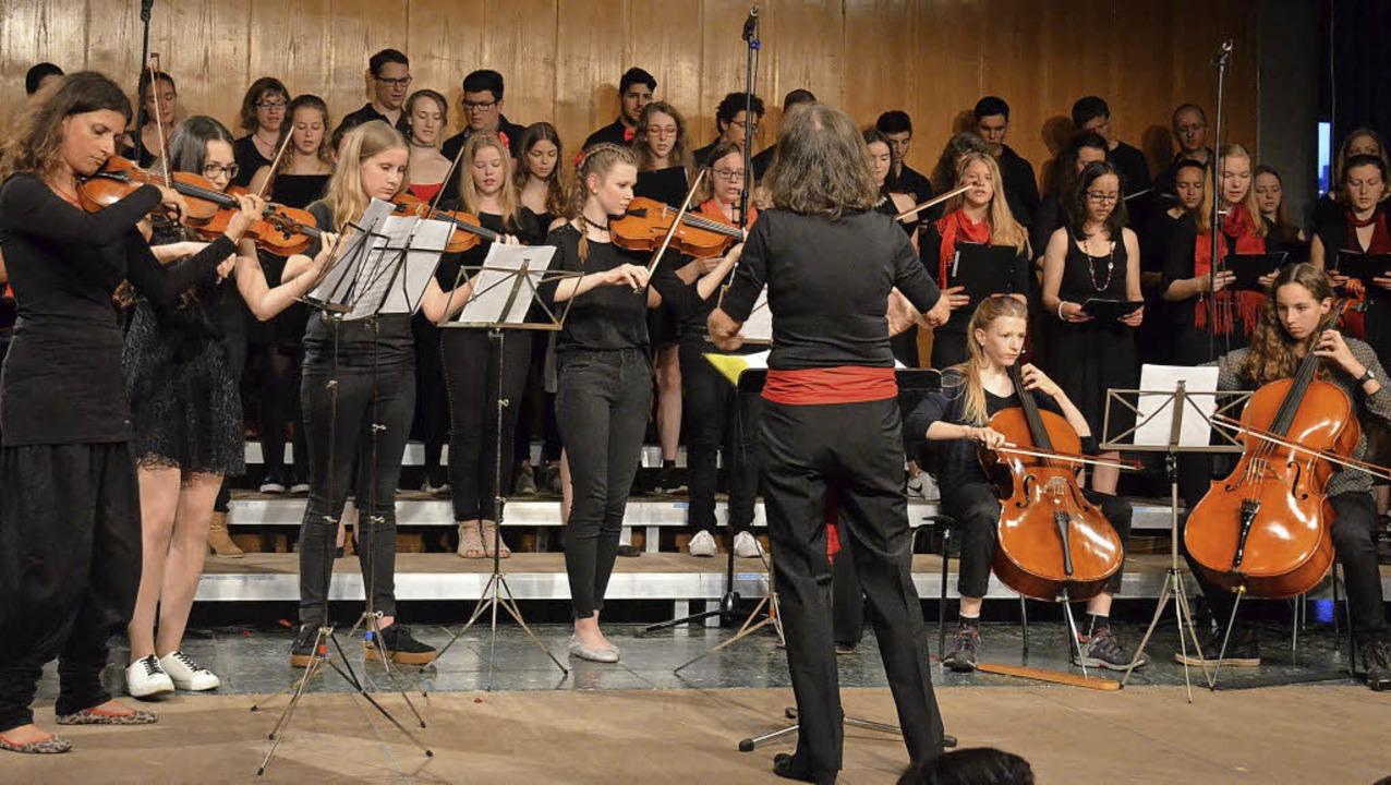 Faustchor und Streicherensemble unter der Leitung von Gabriele Stannat-Deißler  | Foto: Gabriele Hennicke3