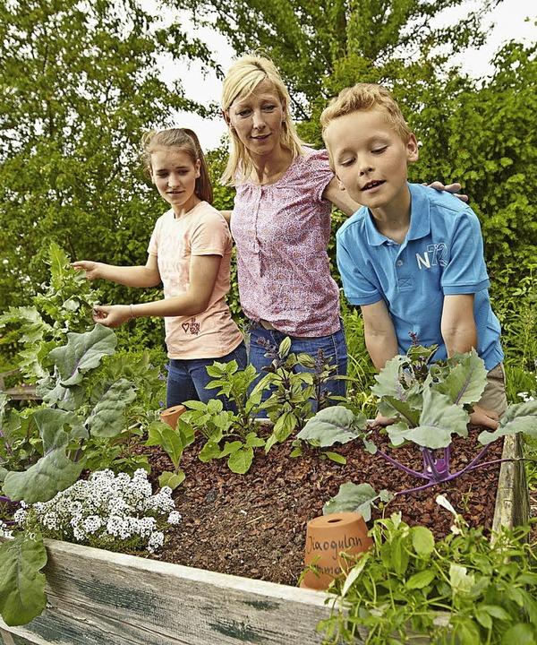 Im Garten verbindet sich Gemüseernte mit Erlebniswert.  | Foto: Floragard