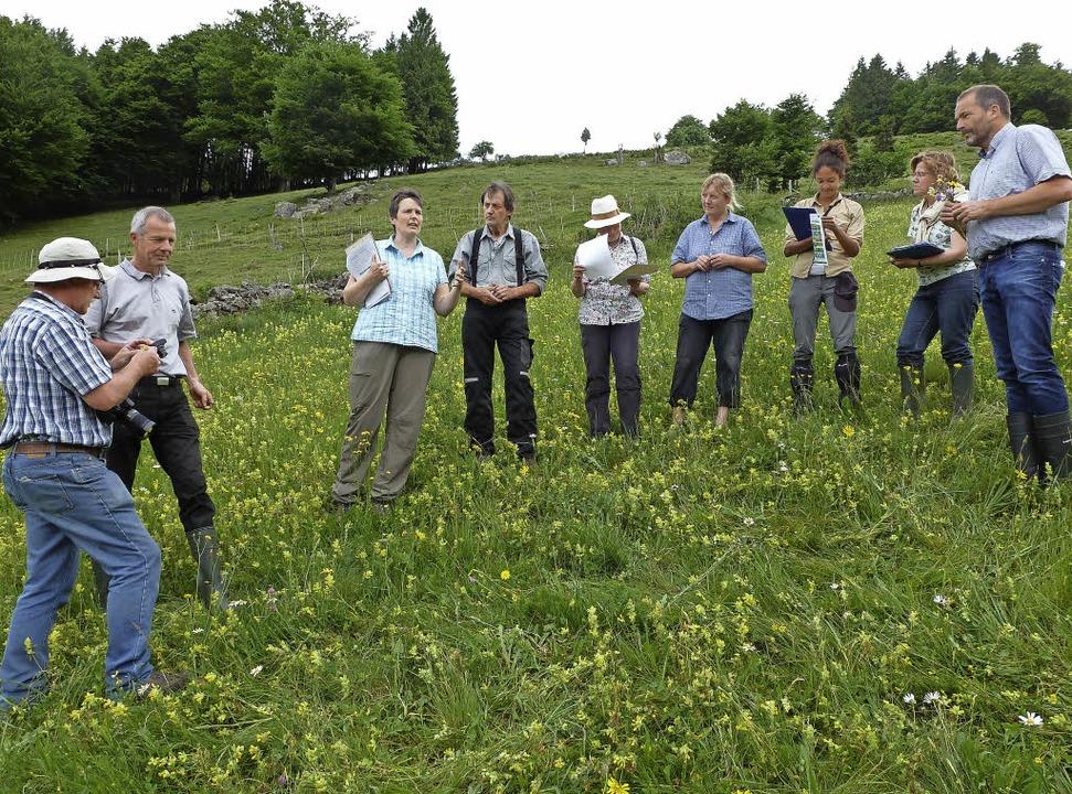 Eine deutsch-französische Expertenjury...ne hohe Artenvielfalt auf den Wiesen.   | Foto:  Eberhard Gross