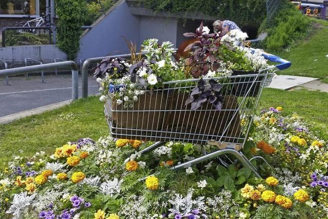 Blühender Einkaufswagen