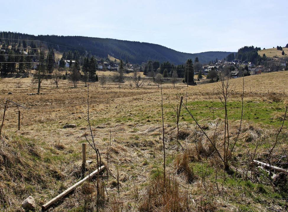 Das Gelände am Feserstegweg, wo der Bauhof entstehen soll.   | Foto: J. Gross