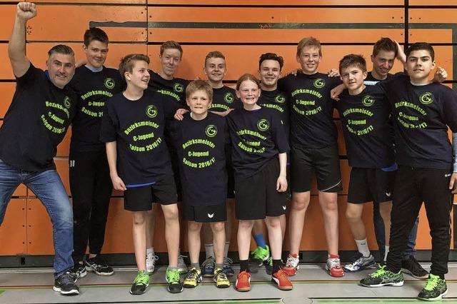 Handballer sind Bezirksmeister