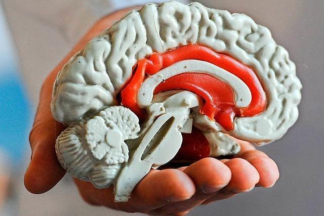 Luftdruck wirkt auf Anfallrisiko von Epileptikern