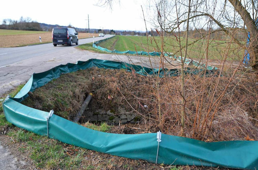 """Ein Amphibienleitsystem unter der Land...;Krötenzaun"""" überflüssig machen.    Foto: Markus Maier"""