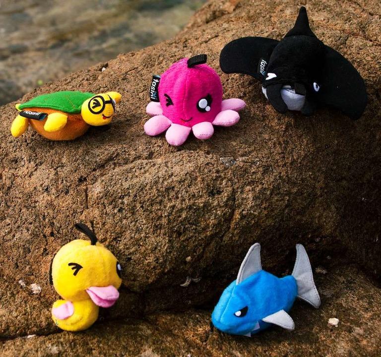 ...und so als Botschafter für den Umweltschutz agieren.    Foto: Making Oceans Plastic Free