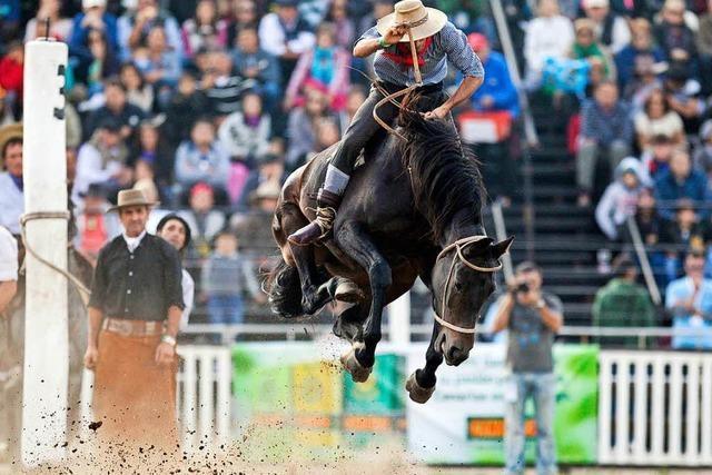 Cowboys sollen Kulturerbe der Unesco werden