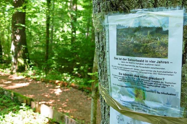 Salzert-Süd in Lörrach wird kein Baugebiet