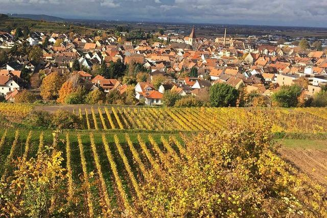 Fall Carolin G.: Tiroler Polizeichef kommt nach Endingen