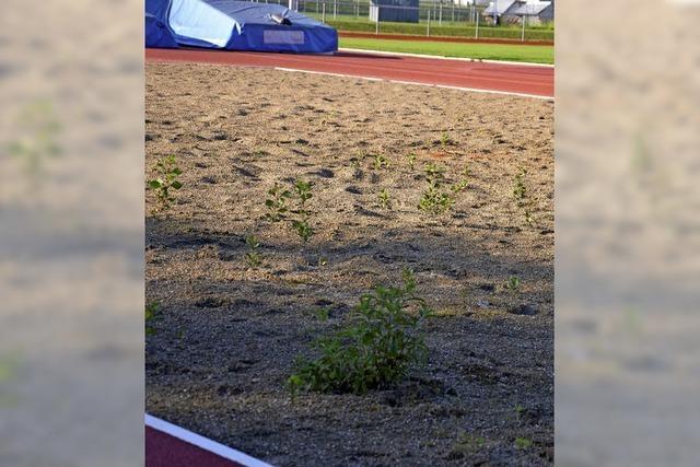 Fußballspielen auf holprigem Rasen