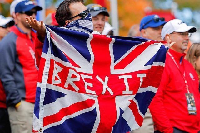 Briten im Breisgau blicken auf Unterhauswahl