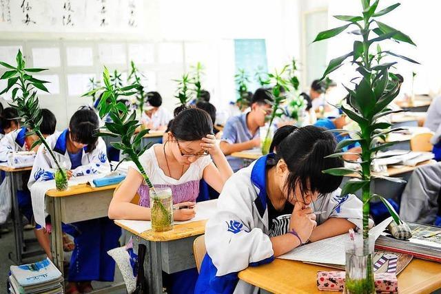 Gaokao: Schüler fürchten Aufnahmetests der Unis