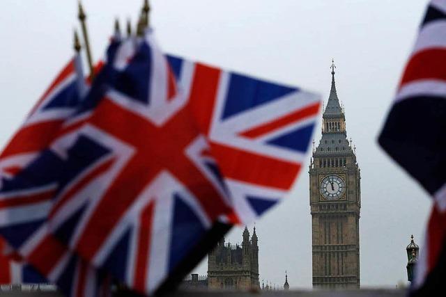 Mr. Fischstäbchen will ins britische Unterhaus