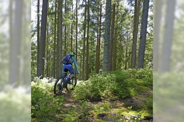 Baiersbronn will jetzt die Mountainbiker anlocken