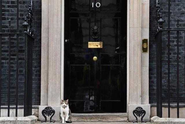 Live-Ticker: Theresa Mays Konservative verlieren die absolute Mehrheit