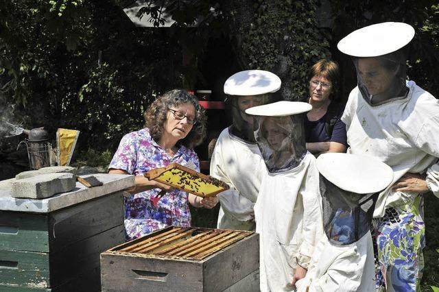 Bienensonntag auf dem Mundenhof