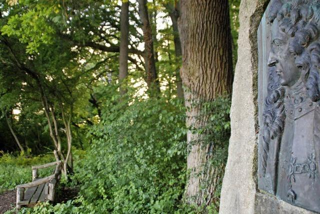 Käferholz am Tüllinger in Lörrach: Schlacht ohne Sieger