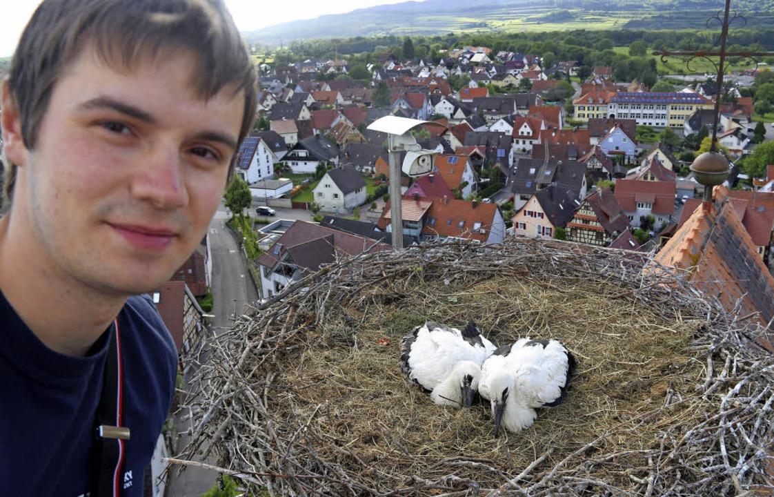 In luftiger Höhe über Gottenheim hat  ...Jungvogel (links) eine Maus serviert.   | Foto: horst david