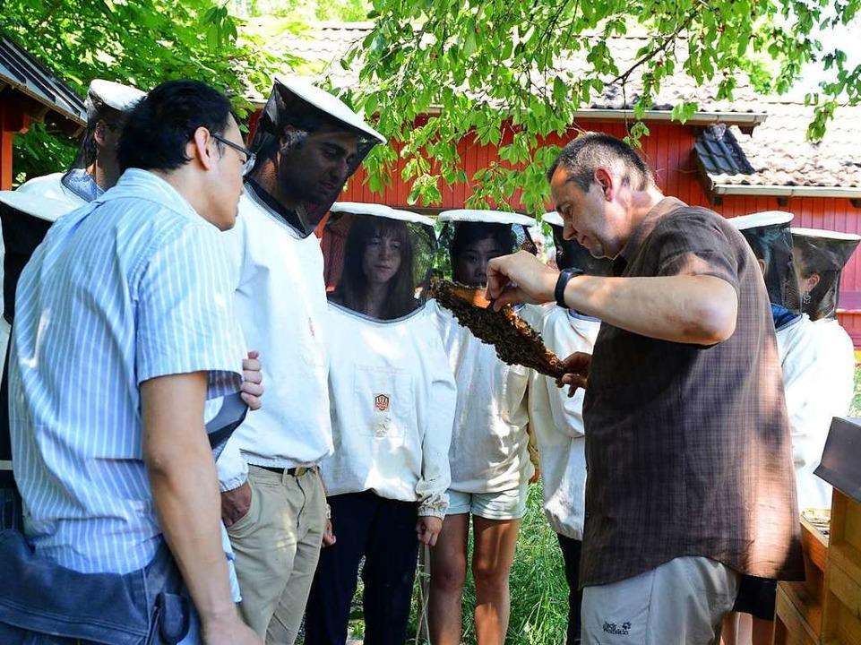 Martin Homburger erklärte viel Wissenswertes über die Bienen.  | Foto: Rita Eggstein