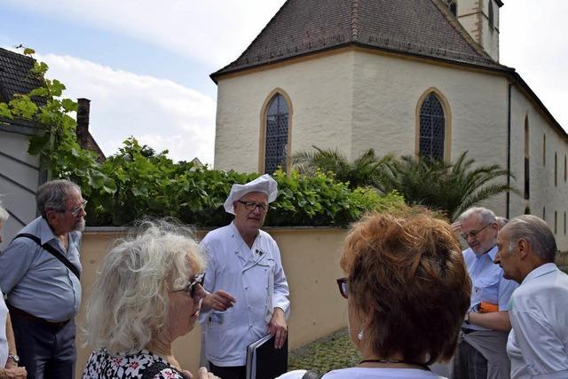 Bäckertour, durch dei Rebberge und Blankenhorn in Müllheim