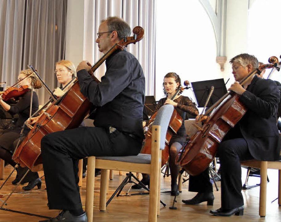 Die Camerata Academica in der Steinhalle.   | Foto: Dagmar Barber