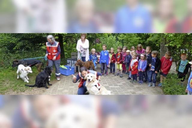 DRK-Hunde fanden Kinder
