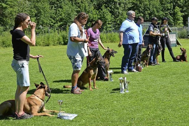 Jubiläumstreffen der Hundesportler