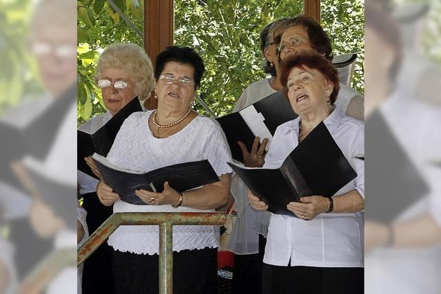 Konzert im Stadtpark