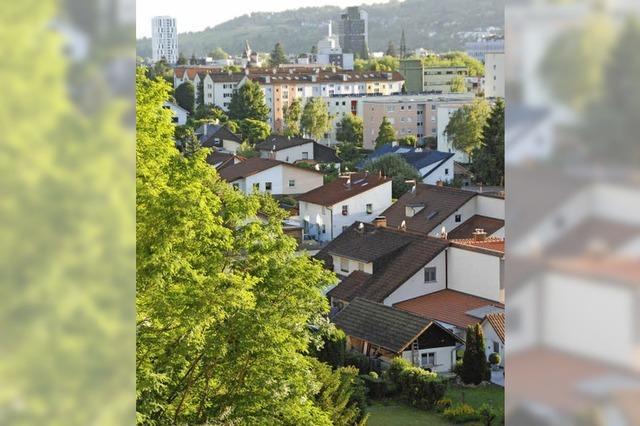Homburger Wald in Lörrach - Berg mit Geheimnissen