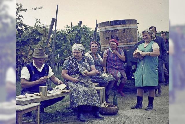 Die WG Oberschopfheim feiert ihr 50-jähriges Bestehen