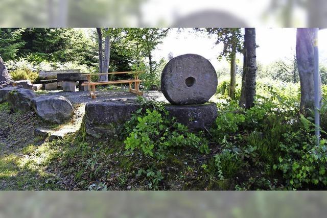 Mühlstein auf dem Langeckrücken