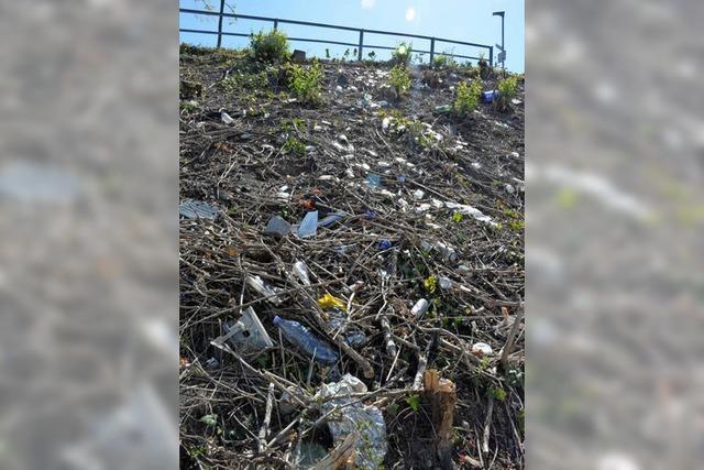 Müll in Weil am Rhein: Ein endloses Ärgernis