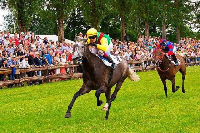 Zu wenig Anmeldungen - Rennverein sagt Pferderennen ab