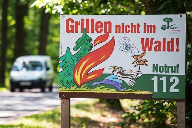 Hitze in Südbaden erhöht die Gefahr von Waldbränden