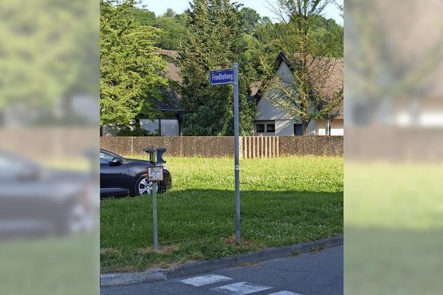 Bürger fordern, eine Wiese in Parkraum umzuwandeln
