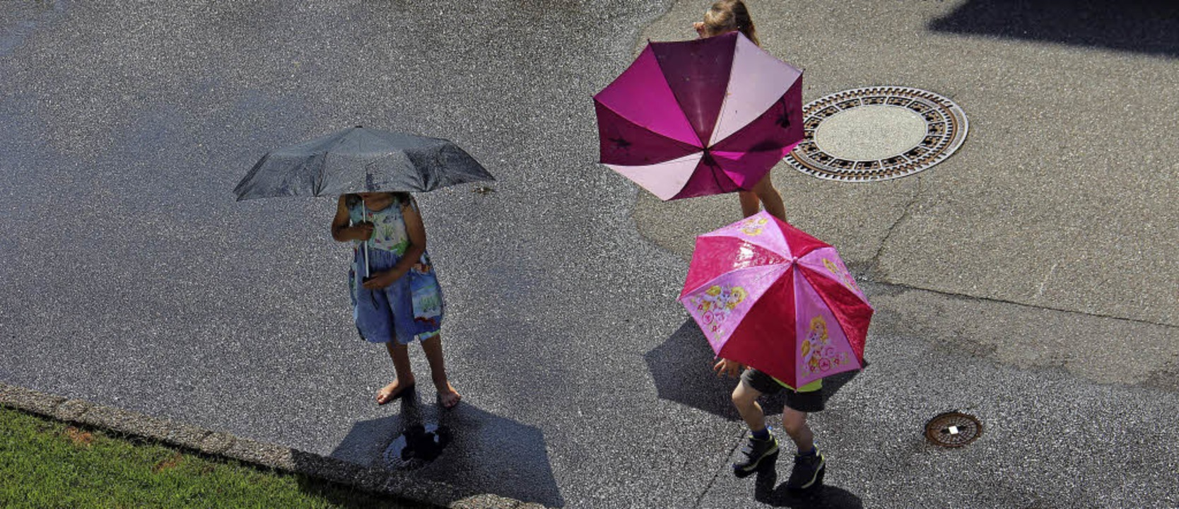 Regen- oder Sonnenschirm? Die Sonnenan...en erfrischenden Guß bestimmt freuen.     Foto: Helmut Kohler