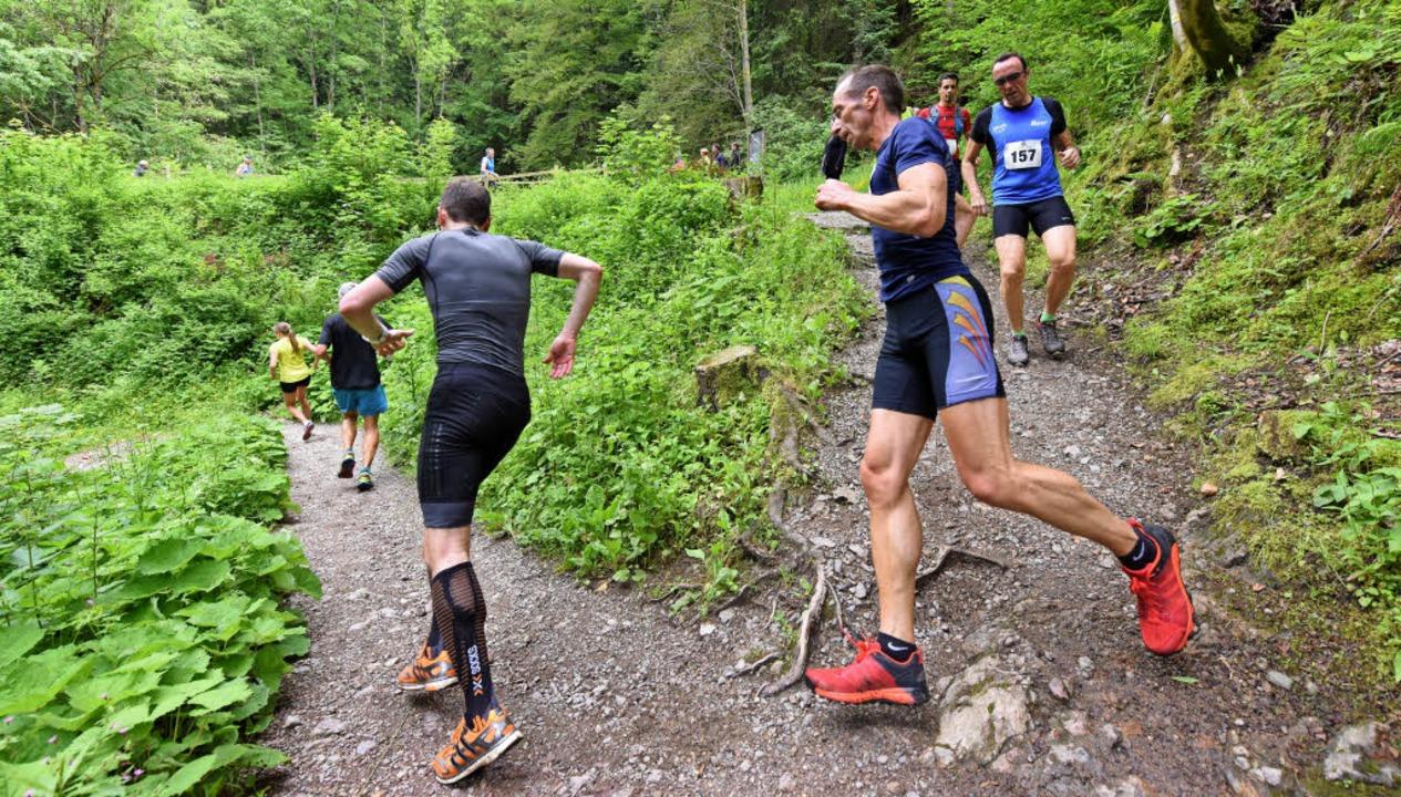 Zuerst steil bergab, dann extrem hinau... härtester Halbmarathon Deutschlands.   | Foto: patrick seeger