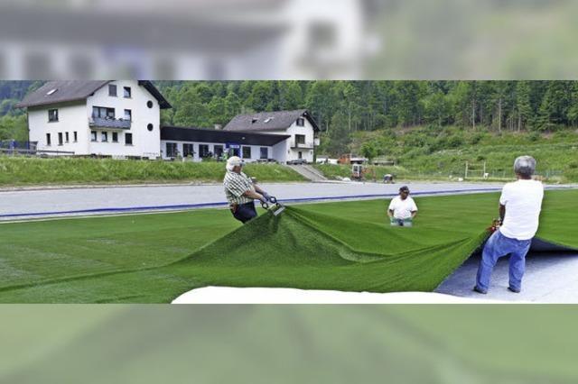 Der Sportplatz wird grün