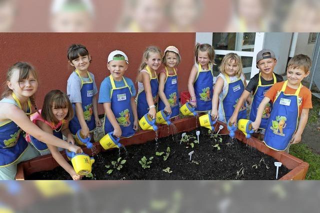Ein Gemüsebeet für die Kinder