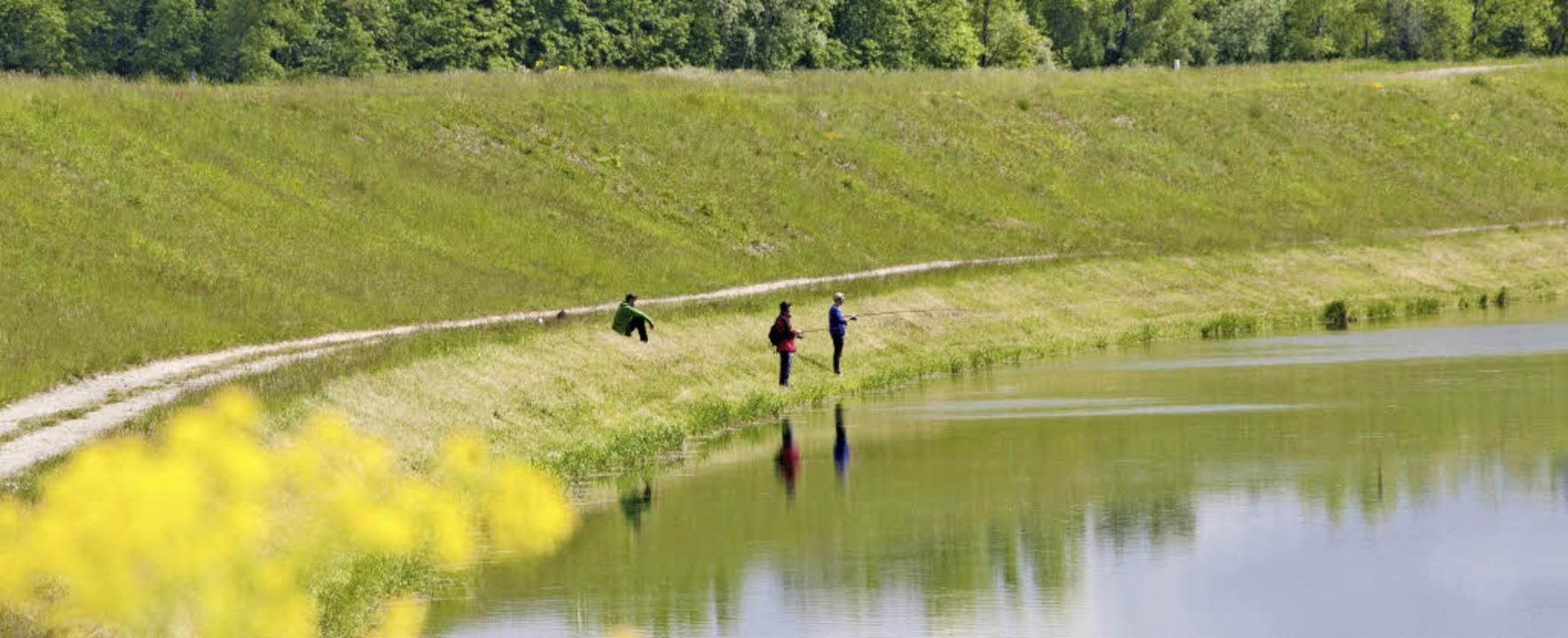 Für Angler ist der Rhein sicher ein Pa...hren plötzlich steigender Wasserpegel.    Foto: Andrea Schiffner