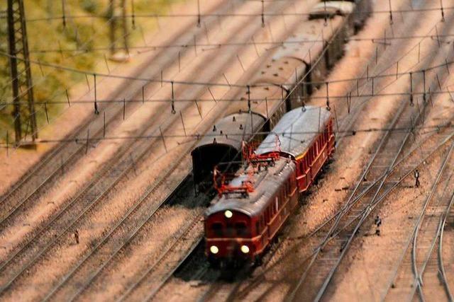 BZ-Leser staunen über das riesige Modell der Höllentalbahn in Offnadingen