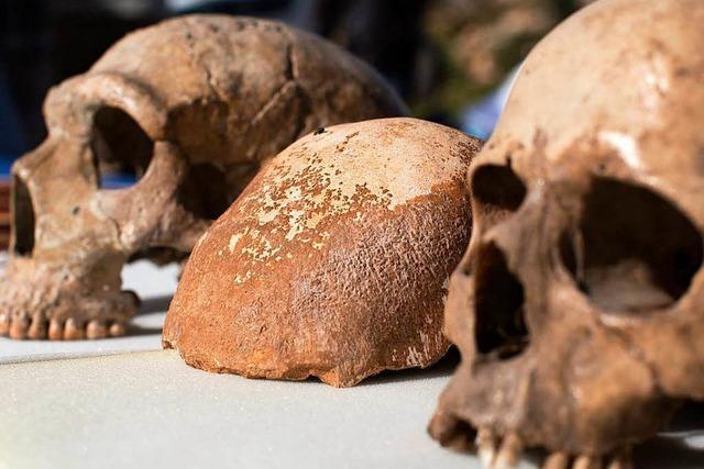 Aktuelle Funde: Muss die Menschheits-Geschichte umgeschrieben werden?