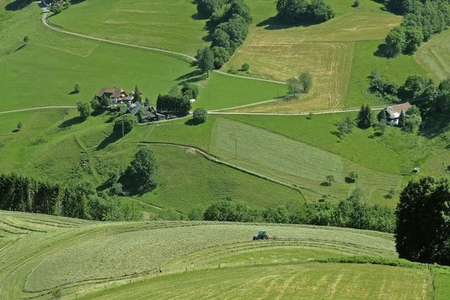 Die Ferienregion Münstertal-Staufen investiert in ein Qualitätsmanagement
