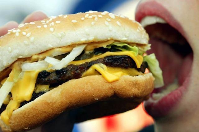 Futter-Tipps für das BZ Food-Truck-Festival in Lörrach