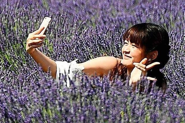 Das optimale Selfie:
