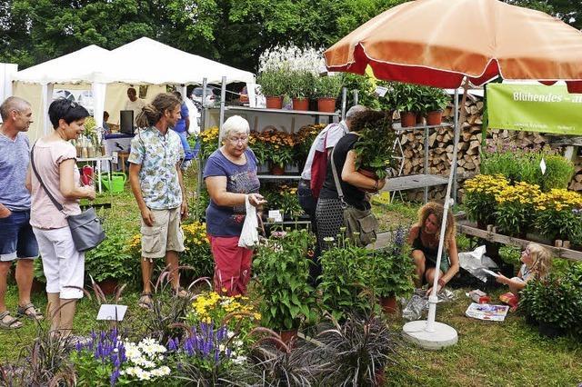 Großes Angebot für Gartenfreunde