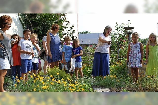 Schulunterricht zwischen Rosen und Gemüse